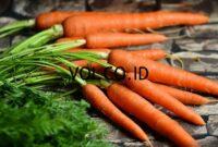 Contoh-Teks-Deskripsi-Sayuran