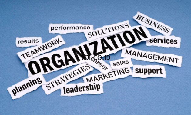 Bentuk-dan-Contoh-Organisasi