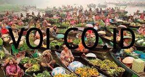 Pasar-Oligopoli