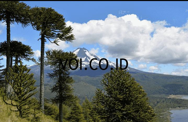 Fungsi-Ekosistem