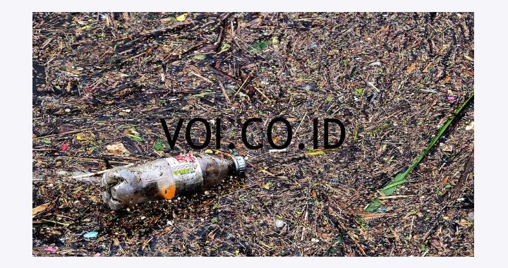 Penyebab-Pencemaran-Lingkungan
