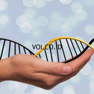 Struktur ganda heliks DNA